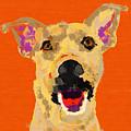 Happy Dog by D Tao