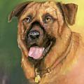 Happy Dog by Sherry Shipley