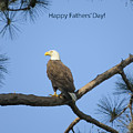 Happy Father's Day by Zina Stromberg