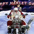 Happy Harley Days by Larry Rice