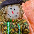Happy Harvest Time by Lisa Kilby