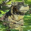 Happy Hippo by Paula Stern