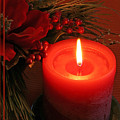 Happy Holidays #1 by Teresa Zieba