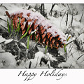 Happy Holidays by Rebecca Samler