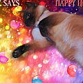 Happy Holidays by Theresa Campbell