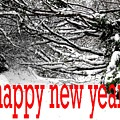 Happy New Year 33 by Patrick J Murphy
