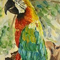 Happy Parrot by Maria Langgle