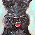 Happy Schnauzer by Leslie Saucier