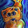 Happy Seal by Lori Teich