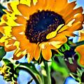 Happy Sunflower by Modern Art
