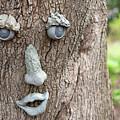 Happy Tree by Deborah Brown
