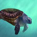 Happy Turtle by Angela Murdock