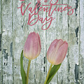 Happy Valentines Day by Kim Hojnacki