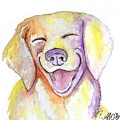 Happy Yellow Dog by Amber O'Brien