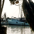 Harbor Boats by Douglas Barnett