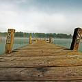 Harbor Dock by Ty Helbach