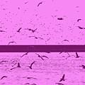 Harbor Gulls Purple by Eddie Barron