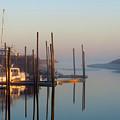 Harbor In Fog by Dianne Cowen