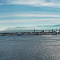 Harbor Panorama  by Alida Thorpe
