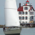 Harbor Sailor by Debbie Parker