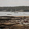 Harbor View by Marcia Lee Jones
