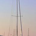 Harborside At Sunrise 3880 by Terri Winkler