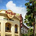 Hard Rock Cafe by Michael Scott