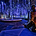 Harding Christmas Lights Hdr by Rod Cuellar