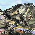 Hardknott Summit Road by Elizabetha Fox