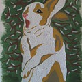 Hare by Carolyn Cable
