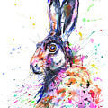 Hare In Grass by Zaira Dzhaubaeva