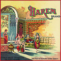Harem Vintage Fruit Packing Crate Label C. 1920 by Daniel Hagerman
