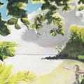 Hark Hawaii by Craig Newland