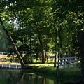 Harlan Springs by Nancy Crouse