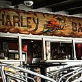 Harley Beach Bar by Jasna Buncic
