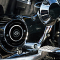 Harley Davidson 17 by Wendy Wilton