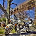 Harley Davidson And Brooklyn Bridge by Geraldine Scull
