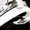 Harley-Davidson Motorcycle Virginia City NV