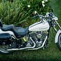 Harley-davidson Softail Deuce 2004 by E Faithe Lester