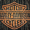 Harley - Davidson by Tama66