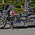 Harley In Hdr by Frank Feliciano