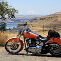 Harley With Columbia River And Mt Hood by Carol Groenen