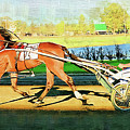 Harness Racer by Clarence Alford
