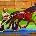 Harness Racing At Bluebonnets by Carole Spandau