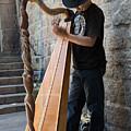 Harpist Street Musician, Barcelona, Spain by Nicole Freedman