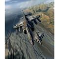 Harrier Element by Peter Van Stigt