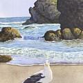 Harris Beach by Catherine G McElroy