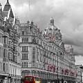 Harrods Of Knightsbridge Bw Hdr by David French