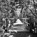 Harry Easterling Bridge Peak Sc Black And White by Lisa Wooten