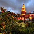 Harvard Community Garden Cambridge Ma by Toby McGuire